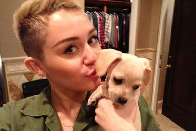 Meet Beans, Miley's too-cute pup