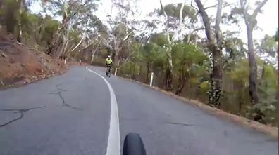 News South Australia Adelaide cyclists deer crossing