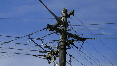 Power poles and wires in NSW will be leased by the state government. (AAP)