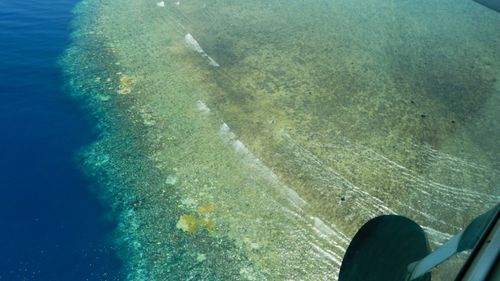 """The historic bleaching has thrust the beloved Barrier Reef into """"uncharted territory."""" (Supplied)"""