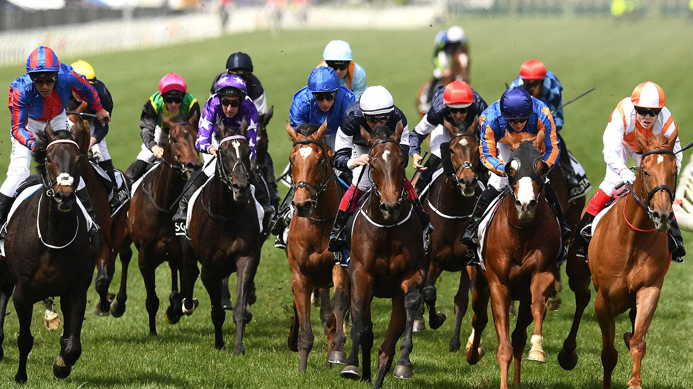 Melbourne Cup full finishing order - Where your horse finished