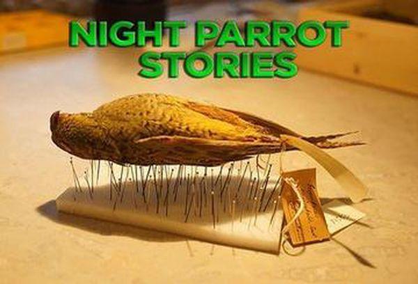 Night Parrot Stories