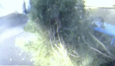 Footage captured the moment the car slammed into the property.