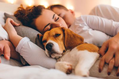 Your bedmates (human or animal) keeps you awake