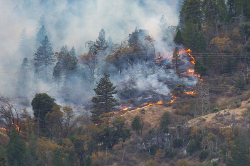 Southern California's huge wildfire roared to life again today in a mountain wilderness area even as many neighbourhoods were reopened to thousands of residents who fled its advance last week.