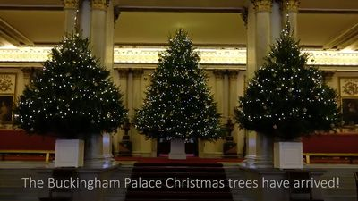 Buckingham Palace looks like a Christmas wonderland