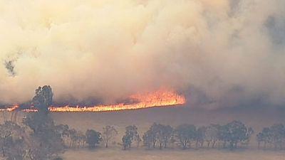 The grass fire near Moyston spread quickly through farmland towards the town. (9NEWS)