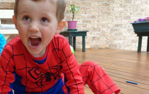 No one has been ruled out in William Tyrrell investigation, inquest hears