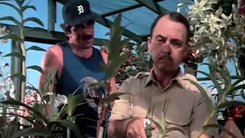 Tom Selleck and John Hillerman star in MAGNUM, P.I.