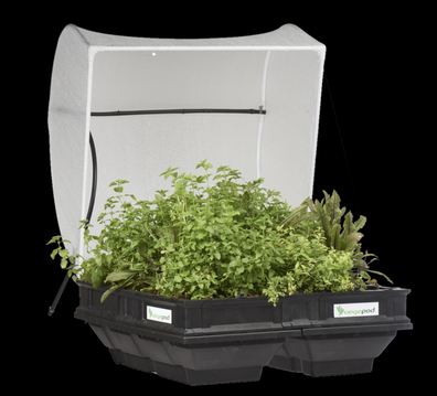 If your dad has a green thumb there are plenty of gardening gifts, like self-watering plant boxes.