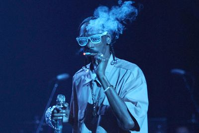 Rapper Snoop Dogg was the first star behind bars in 2012. According to reports, he was caught was caught red-handed by a marijuana-sniffing drug squad dog after his tour bus was stopped at a border patrol checkpoint in Texas. Apparently the rapper has a <i>prescription</i> for pot in California, but there's a 'zero tolerance' policy in Texas.