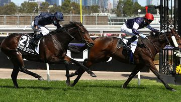 Jye McNeil wins the Melbourne Cup aboard Twilight Payment.