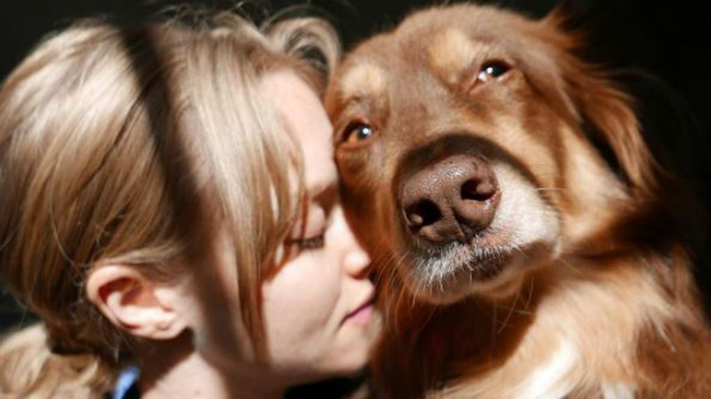 True love - Amanda Seyfried and dog Finn. Image: Instagram/@mingey
