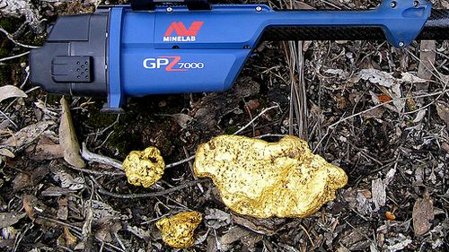 The nugget will be auctioned off. (Minelab)