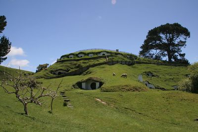 <strong>Hobbiton Movie Set,&nbsp;Matamata&nbsp;</strong>