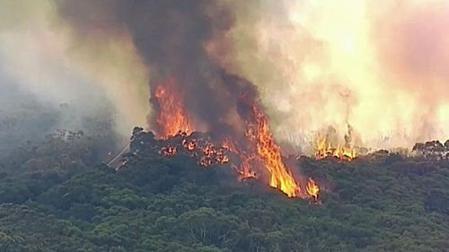 Residents in Sydney's south and the NSW South Coast are being warned to expect smoke for some time. (9NEWS)