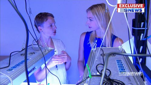 Dr Verena Schoepf is trying to discover what makes the coral so hardy. Picture: 9NEWS