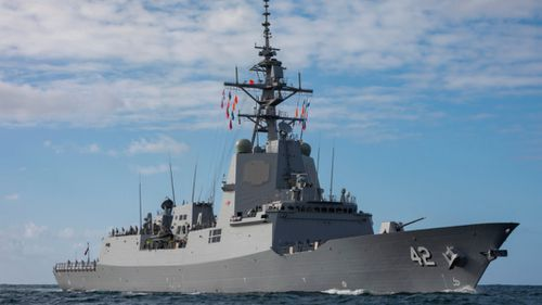 Two whales have been found lodged in the hull of HMAS Sydney