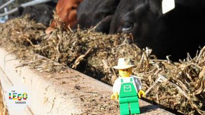 The blog documents the adventures of a farmer figurine. <p></p><p></p>