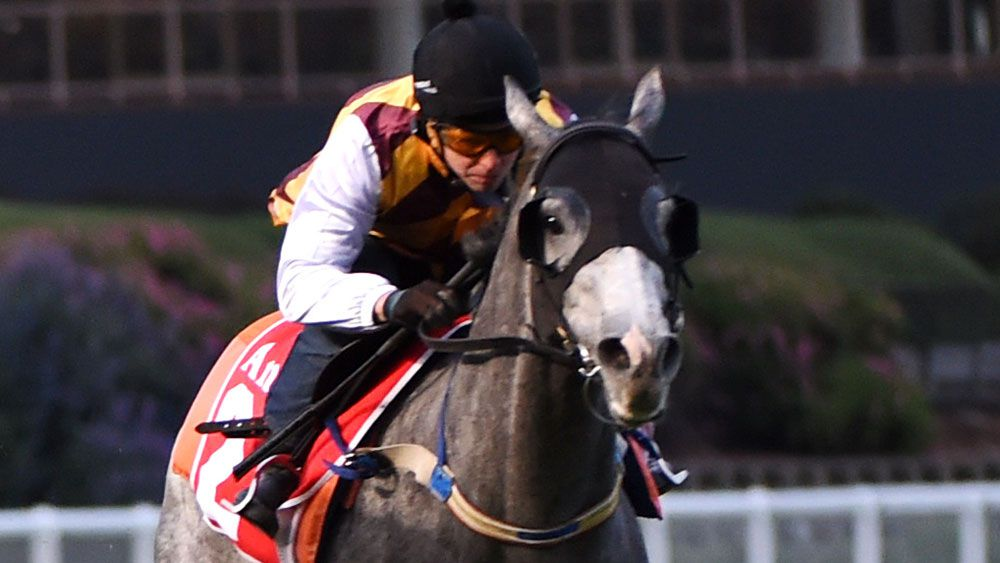 Kerrin McEvoy will pilot Silvera in the Victoria Derby. (Getty Images)