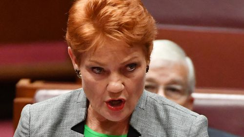 Pauline Hanson: Tax cut support possible
