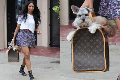 The singer knows compact is best when it comes to buying a furry friend. She's got the dog-in-the-bag thing down pat. Although we're not sure the name Tyson is a good fit. Seems more fit for a guard dog or at least a pooch who can carry his own.