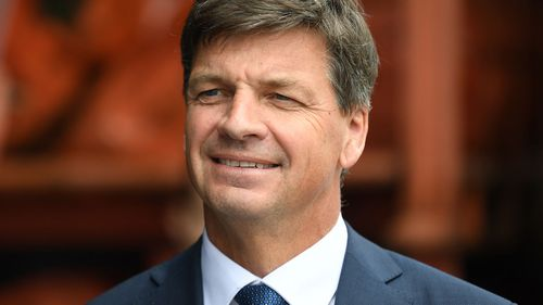 Minister for Energy and Emissions Reduction Angus Taylor.