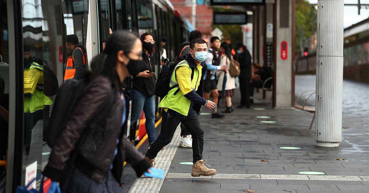 Hopes high that Sydney will dodge lockdown despite search for mystery origin case – 9News