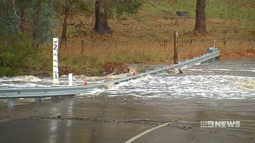 Parts of South Australia received up to 81mm of rain. Picture: 9NEWS
