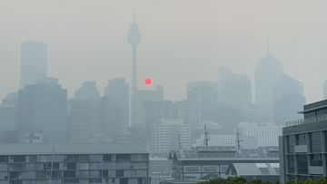Smoke choking Sydney as bushfires rage