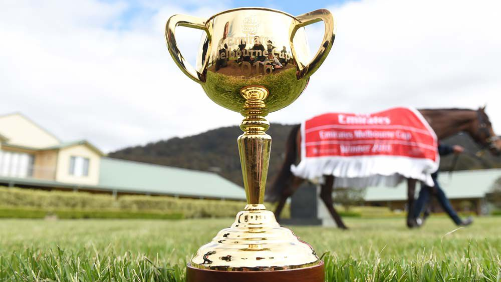 Melbourne Cup 2017: Preview, tips and expert predictions - runner-by-runner