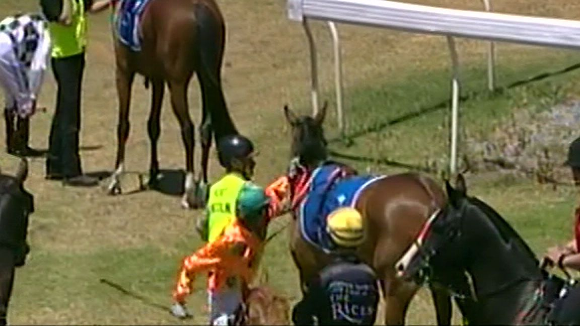 Jockey caught punching horse