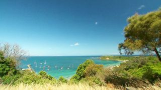 Fiji, New Zealand and the Sunshine Coast