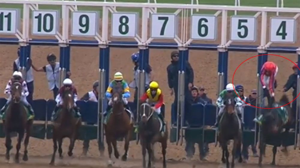 Jockey falls off ride, horse races away to victory