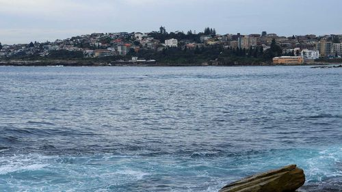 A woman has drowned at Gordons Bay in Sydney.