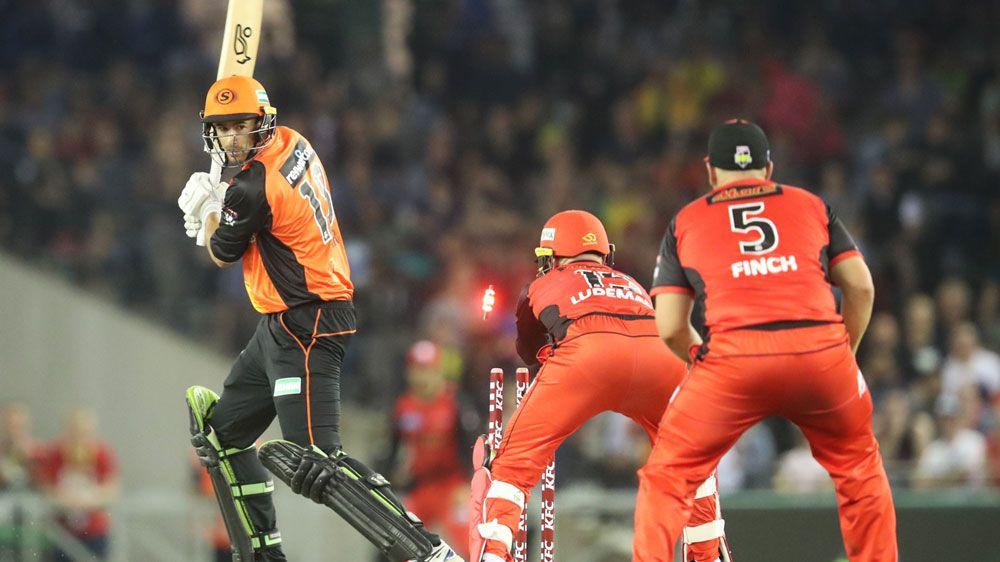 Cricket: Perth Scorchers hand Melbourne Renegades their first BBL defeat