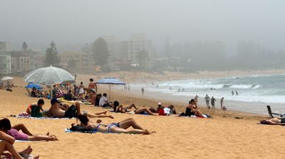 Bathers at Collaroy on the northern beaches found the odd patch of sun under the fog. (Photo: Diimex)