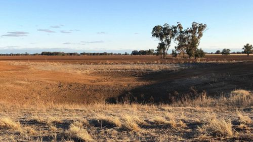 An empty dam on Ms Grech's parched farm.
