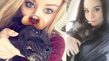 'He's amazing': Dog runs up $30,000 vets bill