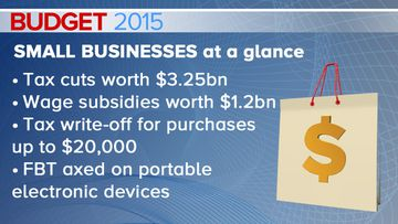 BUDGET 2015: Small business owners to see cuts in tax, red tape