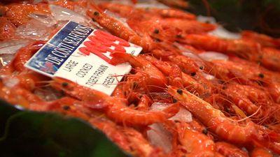 Supermarkets competing in Christmas prawn price war