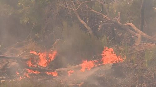 Total fire bans have been declared for 13 districts across the state. (9NEWS)