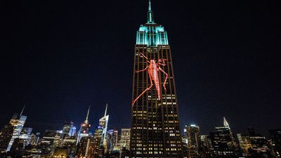 Large images of endangered species are projected on the south facade of The Empire State Building. (AFP)