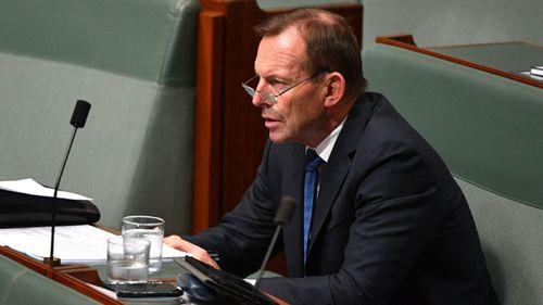 Tony Abbott was also named as a party destabiliser.
