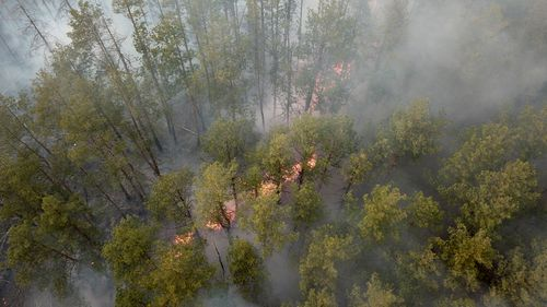 Fires near Chernobyl station raise fears of radioactive material release