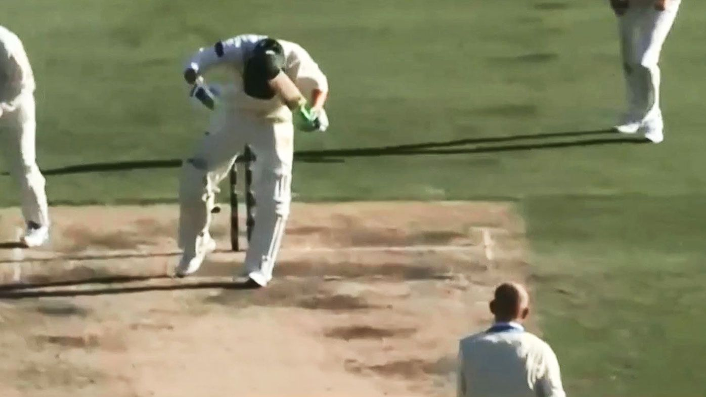 Sheffield Shield: Nathan Lyon roars but Tasmania hold on for draw