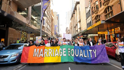 Drop gay marriage exemptions, inquiry told