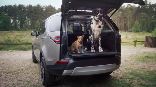 The Land Rover Pet Pack has accessories for every pet family, no matter what size your fur baby is.
