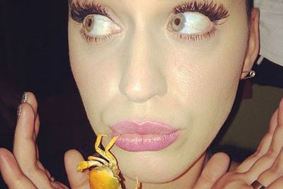 @katyperry: Sometimes I can get a little crabby.