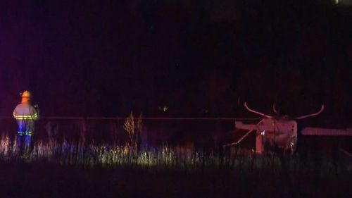 The plane brought down power lines as it crashed. Picture: 9NEWS